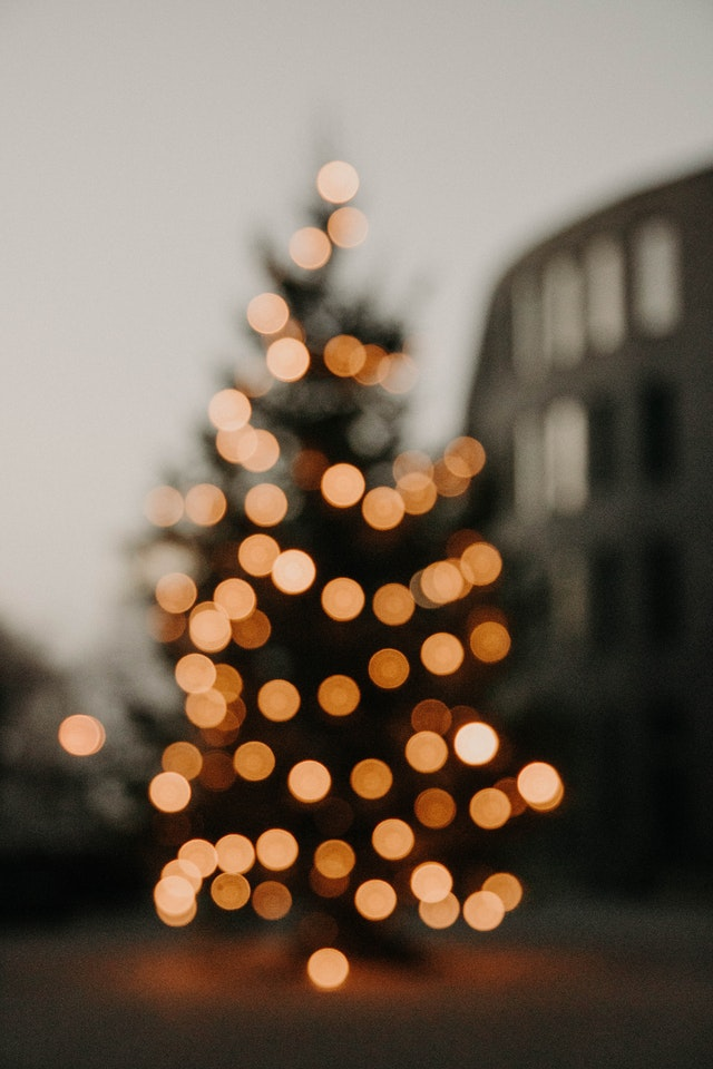 4 Factors to Consider Before Purchasing a Christmas Tree